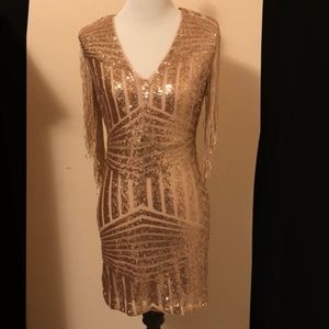 Rose Gold Dress with Tassle Sleeves